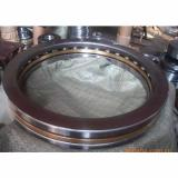 Peer Bearing BB203KRR5